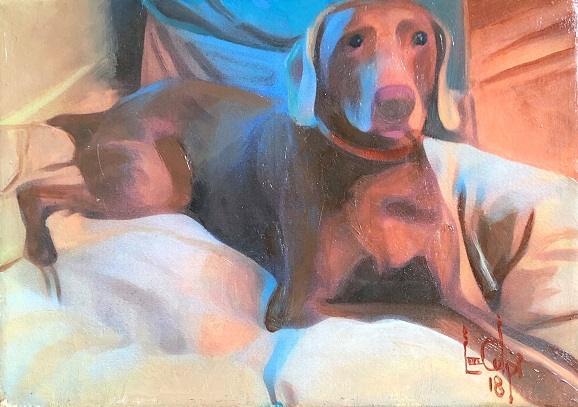 Sorry, a visual representation of Lee Colpi's work entitled, Hound Dog Comfort failed to load.  Please try again later or contact Lee Colpi for more information about this work.